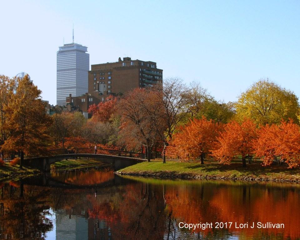 Fall 2011 173cropcolorcr